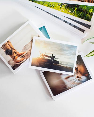 fotos focu